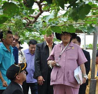 HRH Princess Sirindhorn proceeded to look at the Thai-Laos Cooperation Project