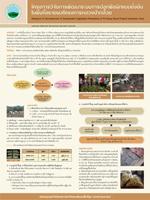 12. โครงการวิจัยการพัฒนาระบบการปลูกพืชผักแบบยั่งยืนในพื้นที่ขยายผลโครงการหลวงป่ากล้วย