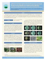 18. ชุดโครงการวิจัยและพัฒนาชีวภัณฑ์เกษตรและผลิตภัณฑ์สำหรับการปลูกพืชเพื่อลดการใช้สารเคมีบนพื้นที่สูง